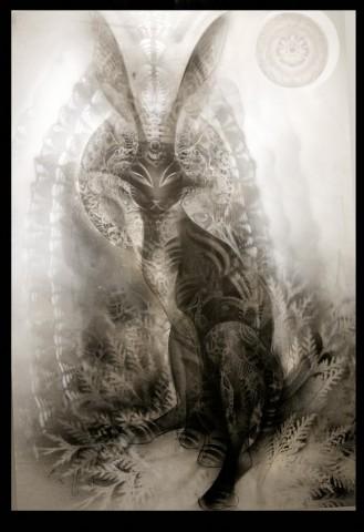black_rabbit_of_inle1