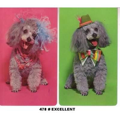 478-poodles-exc1